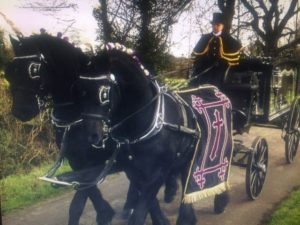 Horse Funeral Hearse Hull