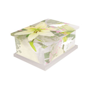 Pollination Ashes Urn Picture Casket